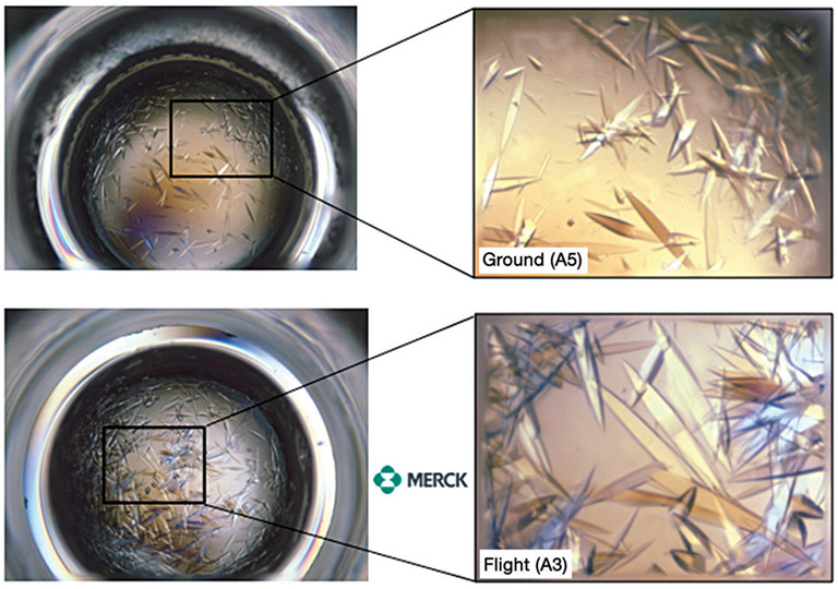 Merck microgravity crystals experiment