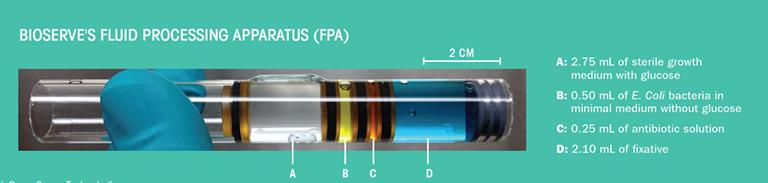 bioserve syringe upward