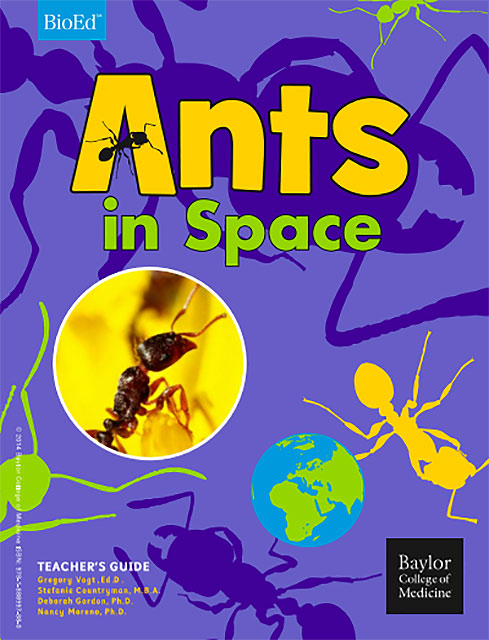 ants in space cover