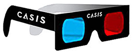 3d casis glasses5