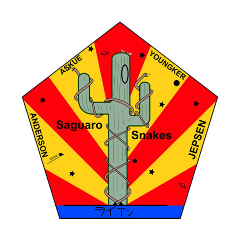 saguaro snakes mission patch