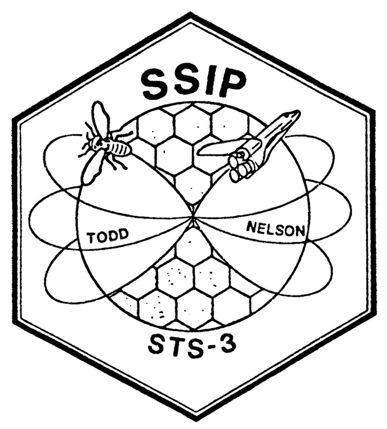 nasa insect obs SSIP STS3 1982 patch