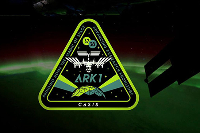ark1 patch 1
