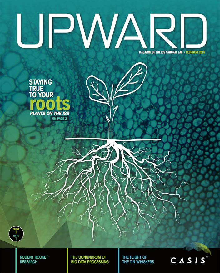 upward volume 1 issue 1 cover