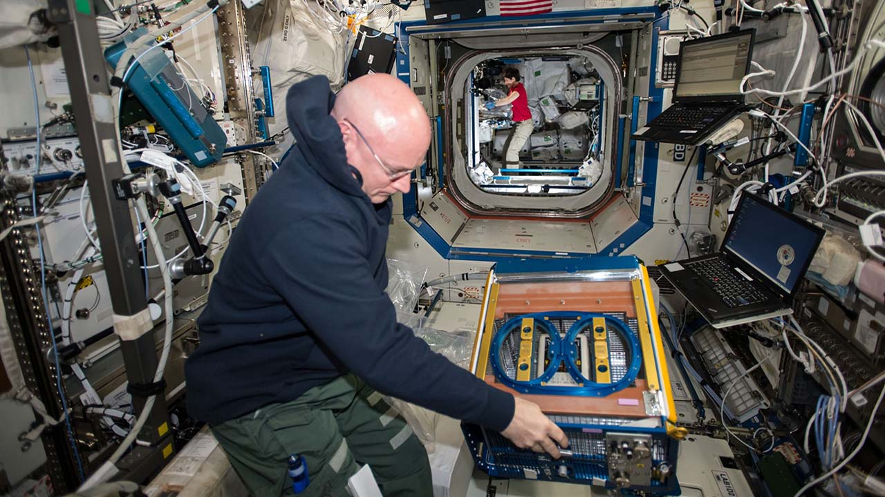 scott kelly rodent research facility onstation