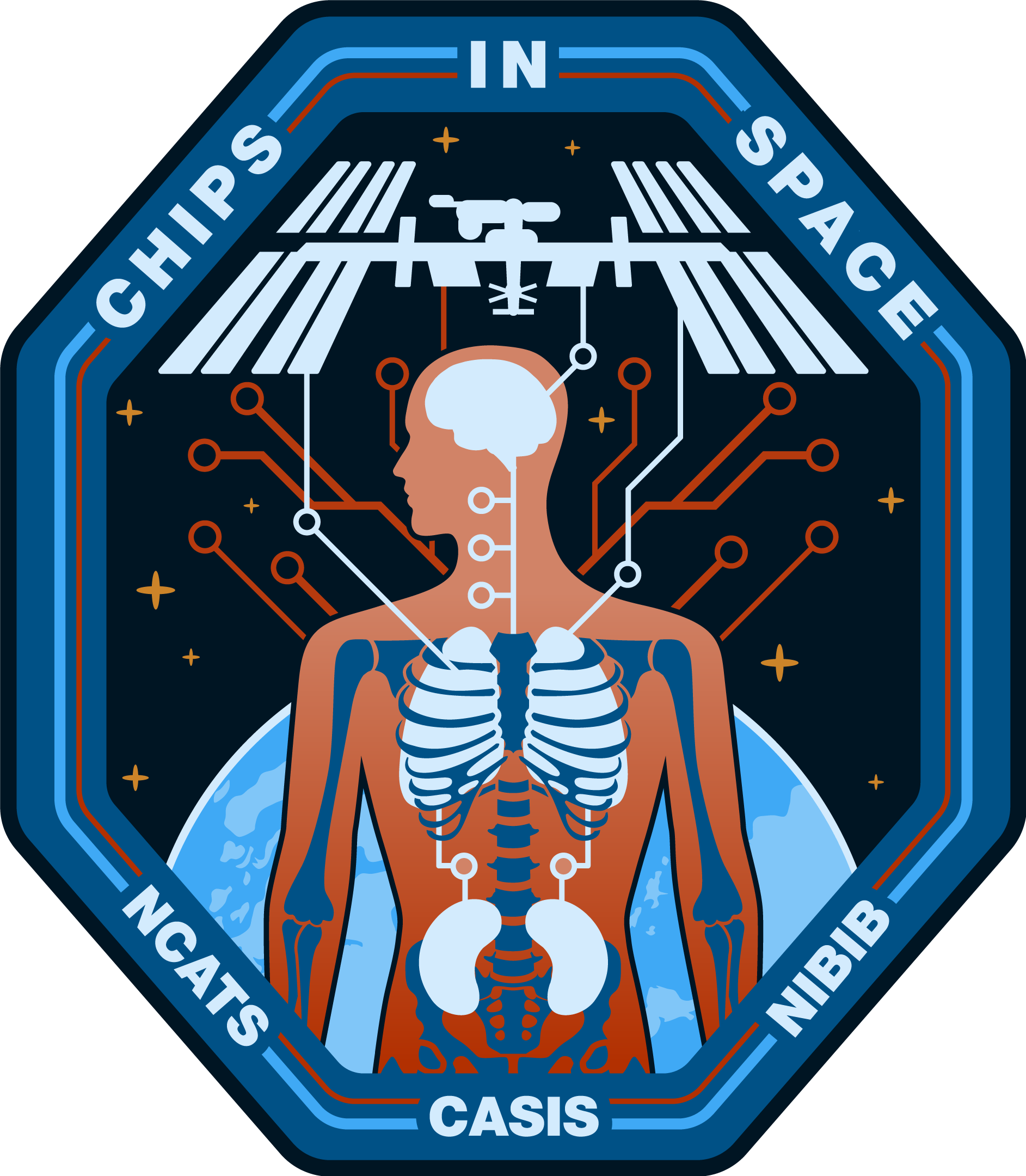 ISSNL17 075 Chips in Space Mission Patch Final