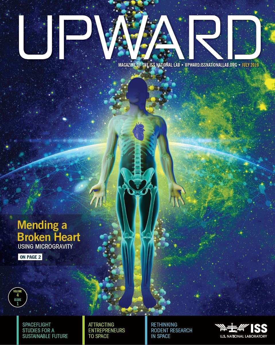 Upward4 1 Cover lower res