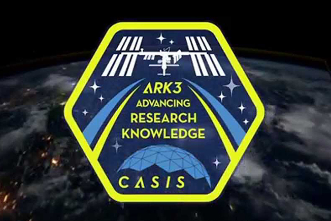 ark3 mission patch