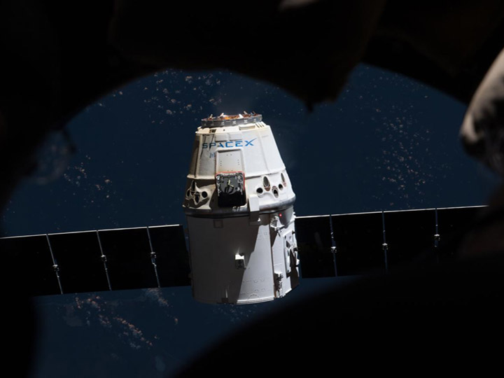 dragon through cupola