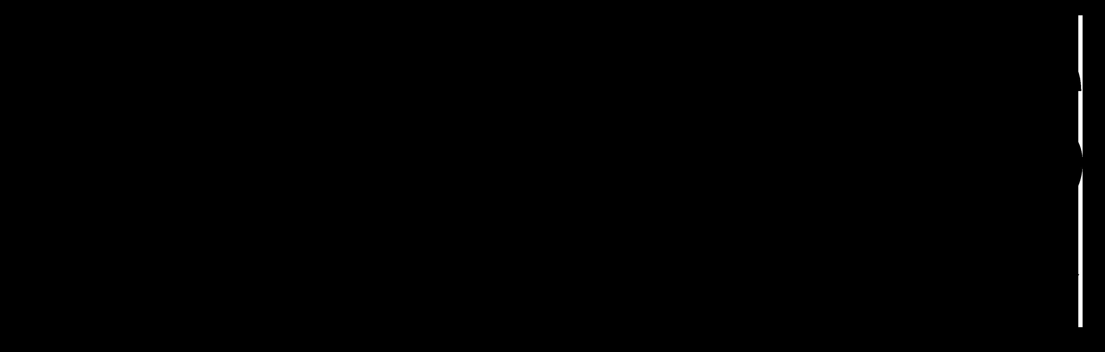 issnl full logo 3600