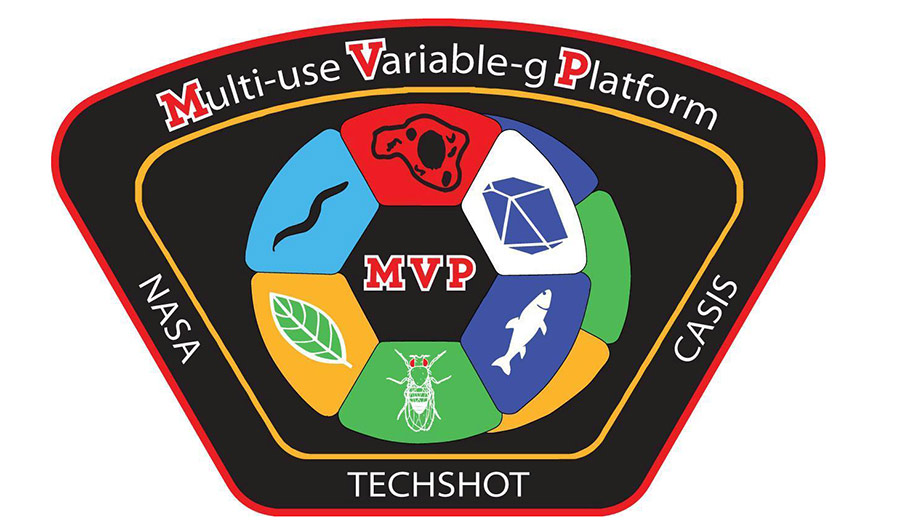 mvp patch techshot