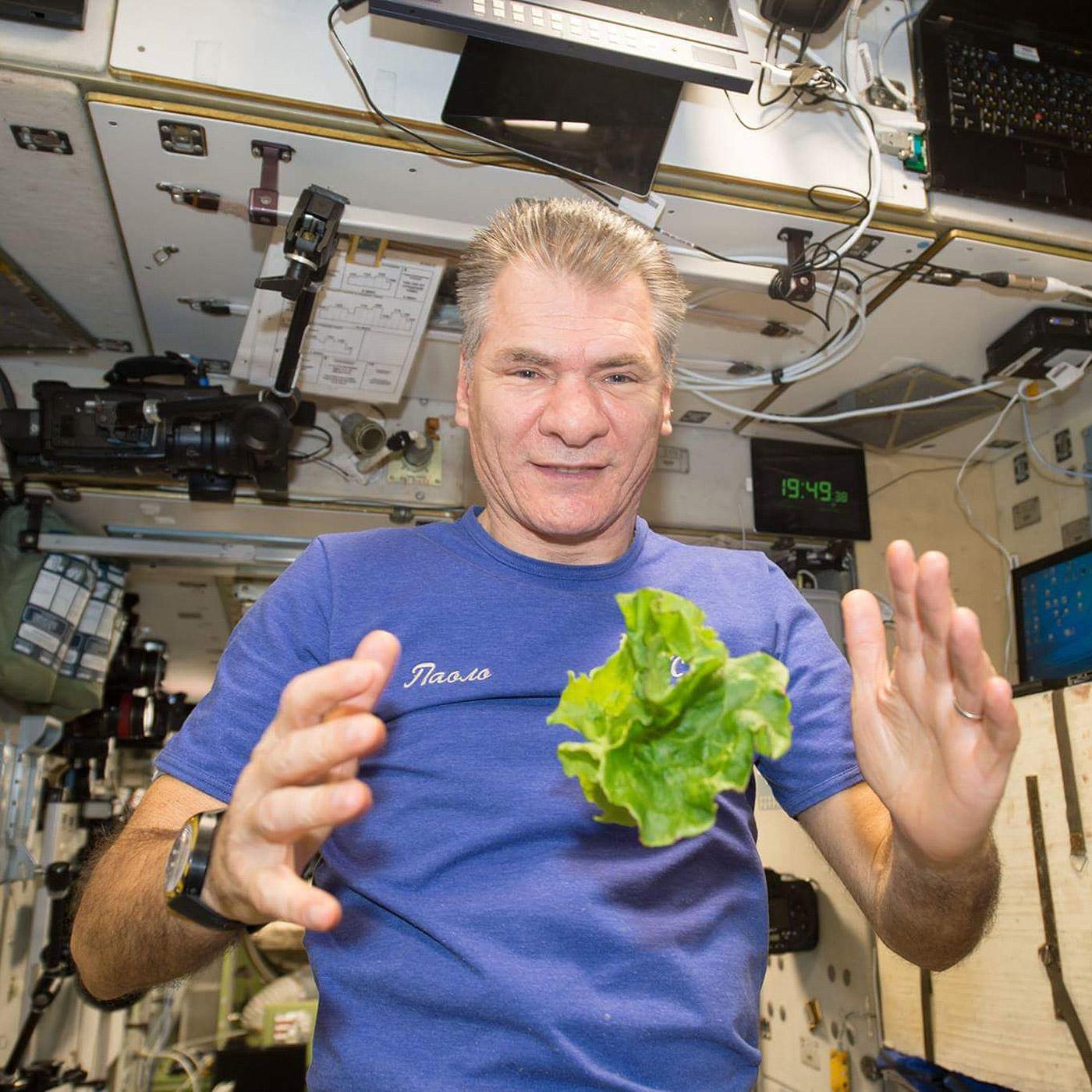 paolo nespoli floating lettuce