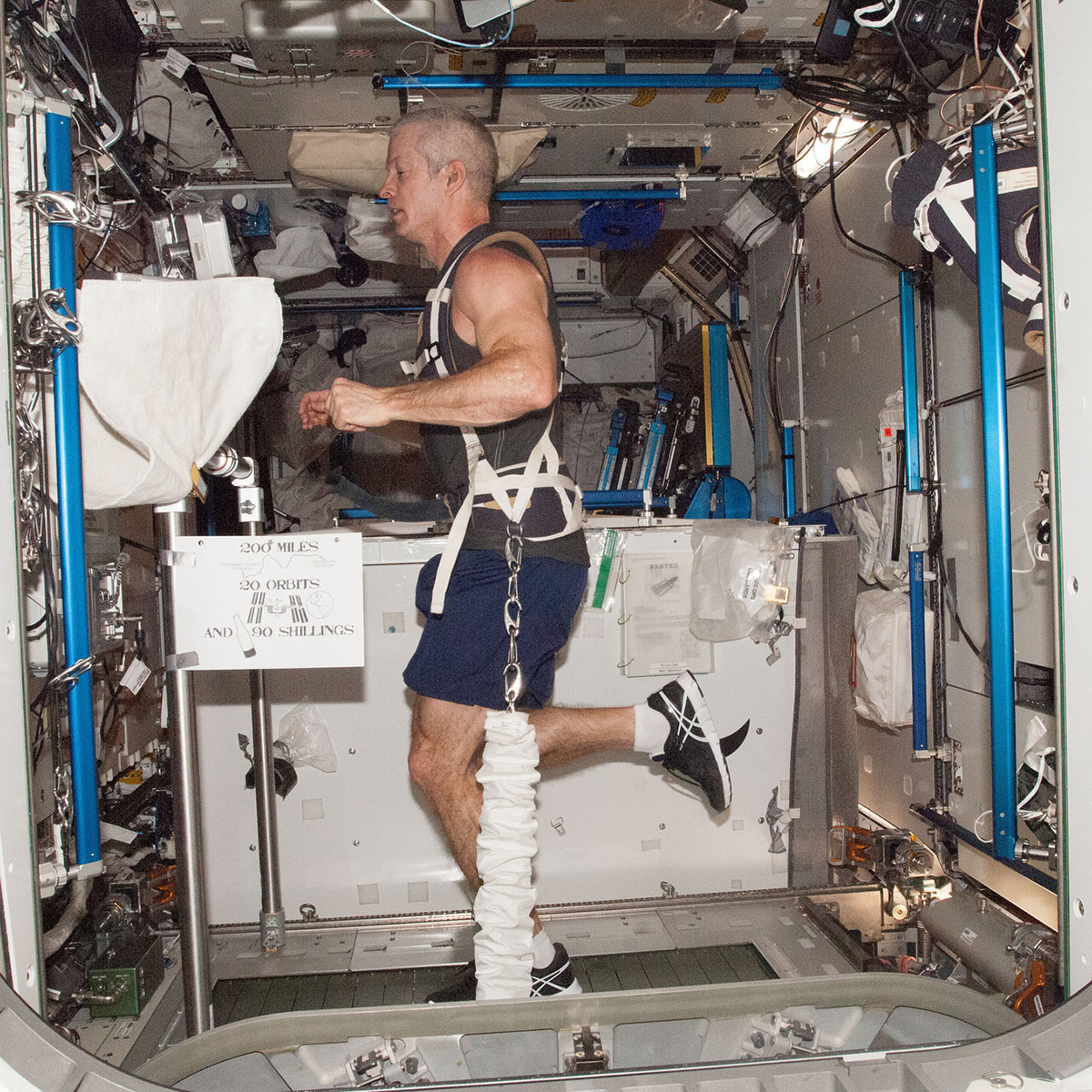 steve swanson exercise in space