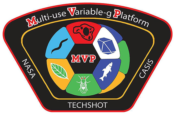 techshot mvp patch