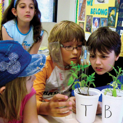 tomatosphere elementary students analyze plant growth